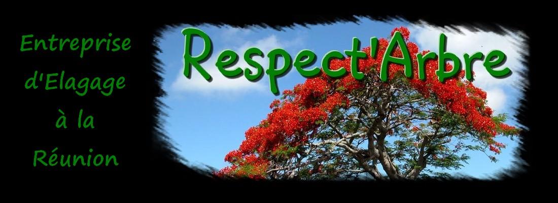 respect 39 arbre elagage entreprise d 39 lagage la r union. Black Bedroom Furniture Sets. Home Design Ideas